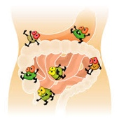 MegaFood Probiotics